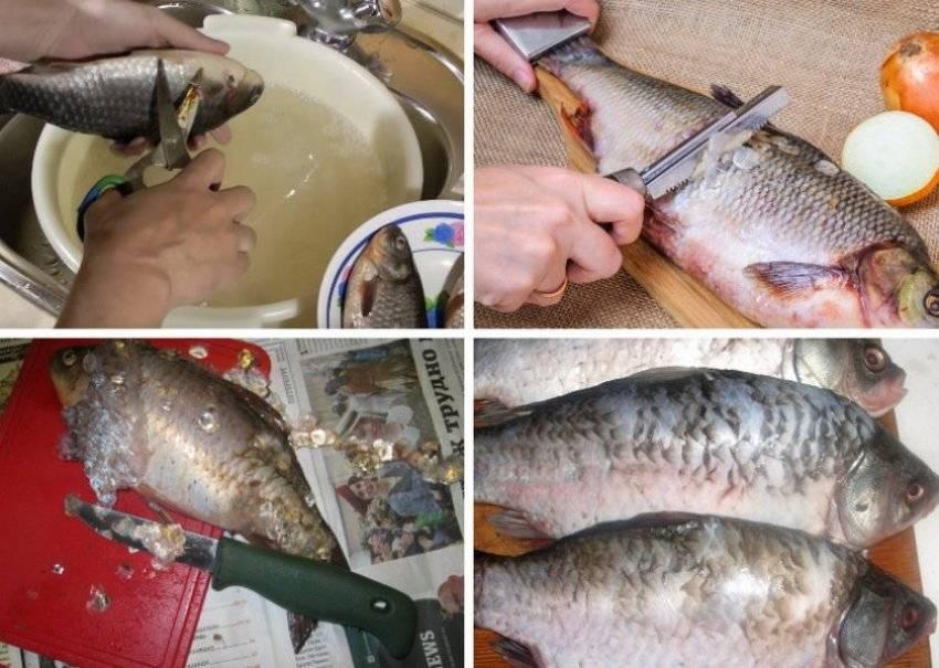 Вяленого леща как чистить - рыбалка
