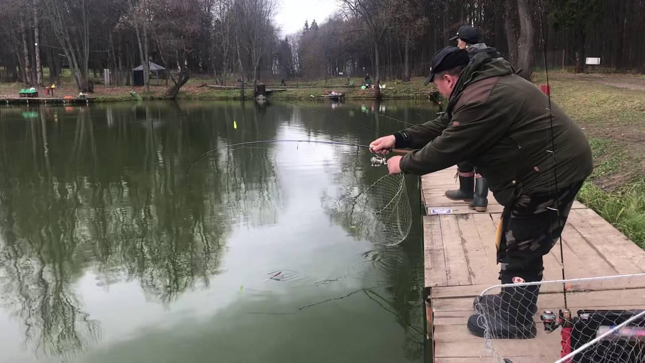 Рыбалка в ольгово: места и особенности