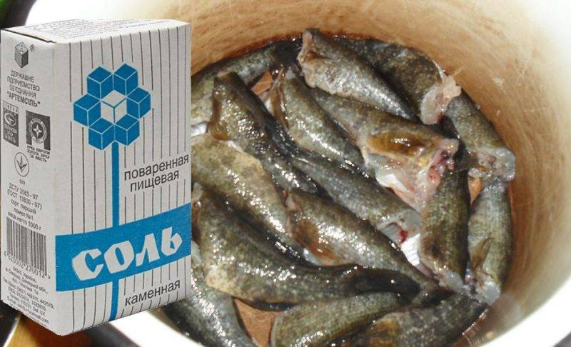Солитер в рыбе: насколько опасен для человека - фото, можно ли есть