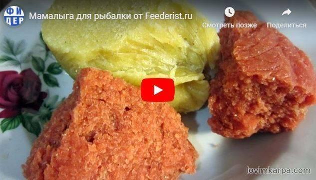Мамалыга из кукурузной муки — самый правильный рецепт для рыбалки