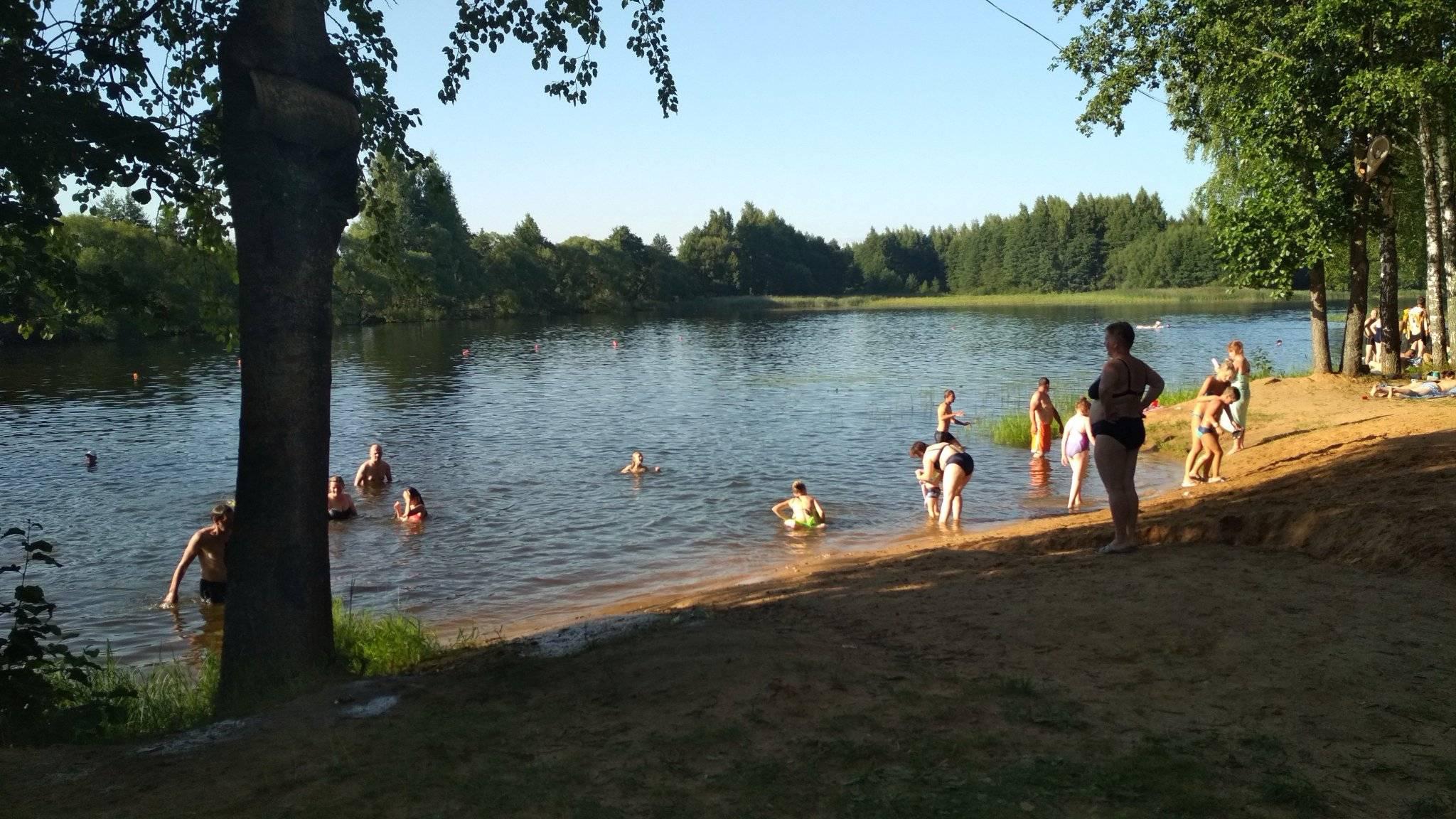 Золотой пляж в зеленогорске: как добраться, фото 2020, инфраструктура, отели — туристер.ру
