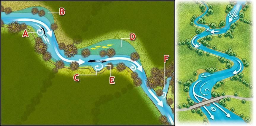 Как выбрать место для водоёма на участке и на что стоит обратить особое внимание
