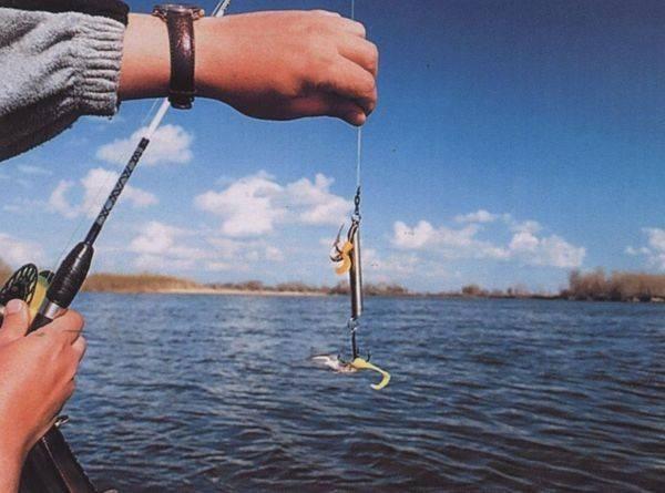 Ловля судака на спиннинг и в отвес с лодки в разные времена года