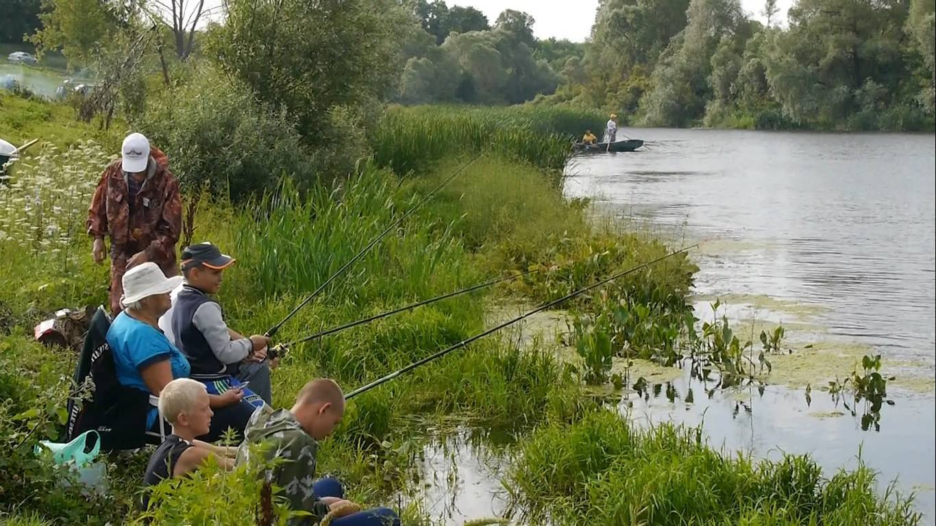 Белгород - календарь рыболова. рыбалка в белгороде, график клёва рыбы.