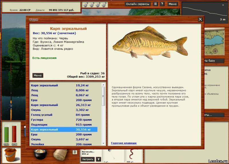 Как поймать рыбу без удочки: видео и 11 лучших способов