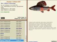 Как поймать рыбу – руководство для начинающих | пресноводная рыбалка в норвегии