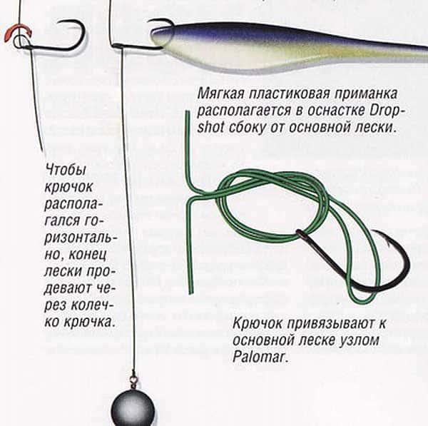 Оснастка дроп шот: ловля судака, щуки, окуня с берега и лодки