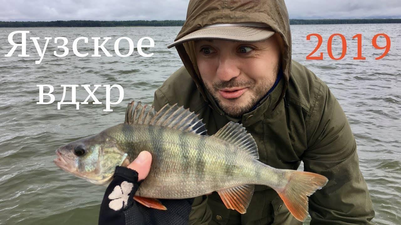 Летняя рыбалка на водохранилище — отдых и летняя рыбалка на яузском водохранилище