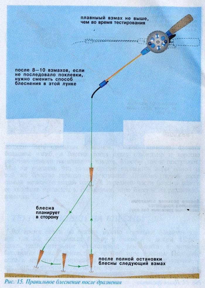 Зимняя ловля судака: все о водоемах, снастях и лучших приманках, а также видео-инструкция о рыбалке со льда