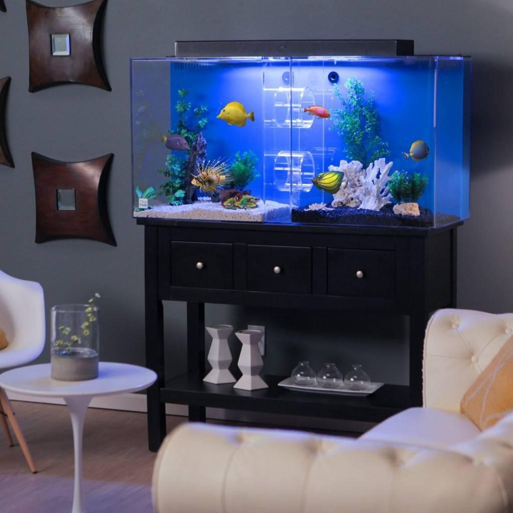 Большой аквариум дома: какой лучше выбрать, как самостоятельно сделать и обустроить