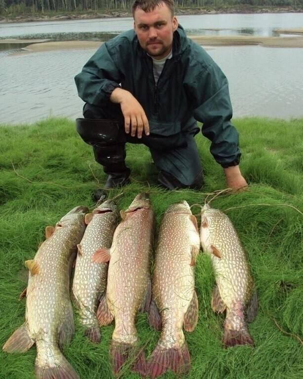Шапсугское водохранилище: где находится, рыбалка, отдых, фото туристов