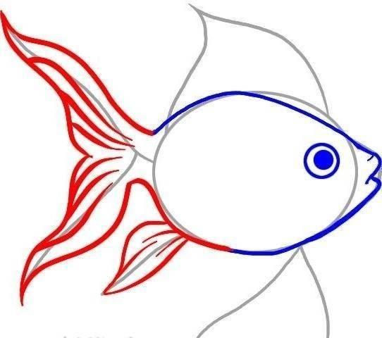 Нарисовать рыбка – как нарисовать золотую рыбку поэтапно. пошаговый урок рисования рыбки уроки рисования для начинающих, мультики, раскраски.