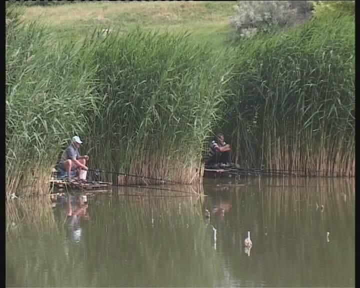 Рыбалка в белгородской области — обзор бесплатных и платных водоемов