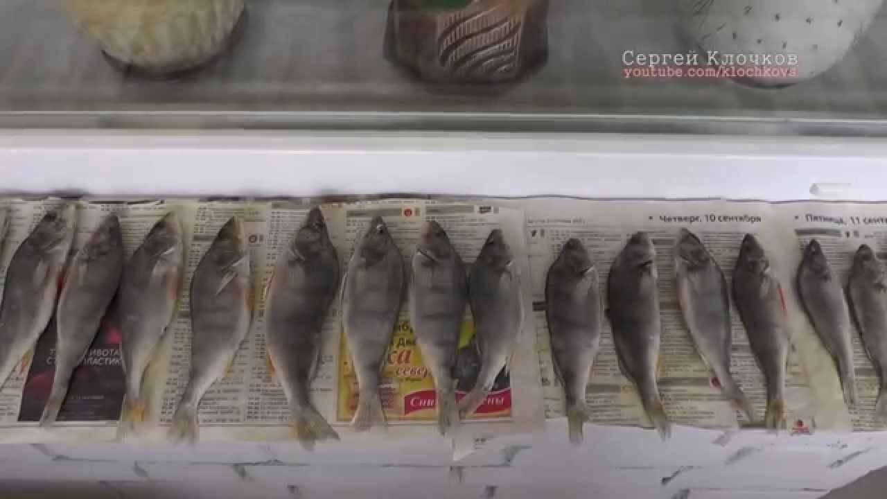 Как хранить вяленую рыбу в домашних условиях: сроки, условия, лучшие способы
