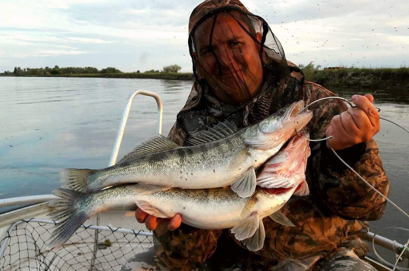 Что брать с собой на рыбалку: снасти для рыбалки - рыбалка на ахтубе с комфортом - база трёхречье