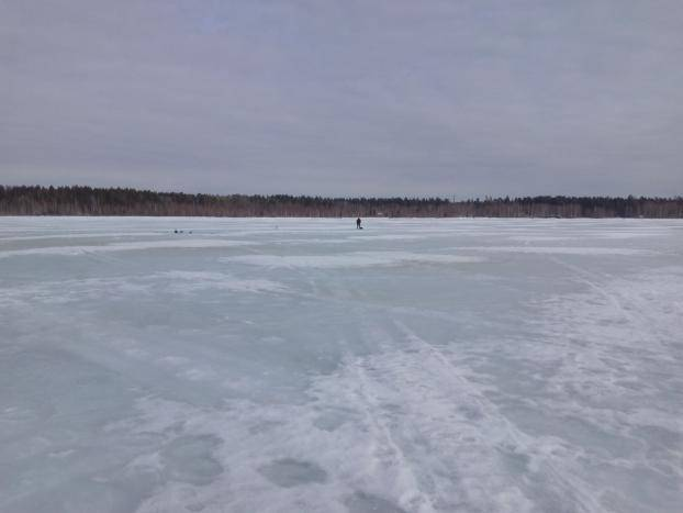 Рыбалка в белозерске в беларуси: особенности, какая рыба водится