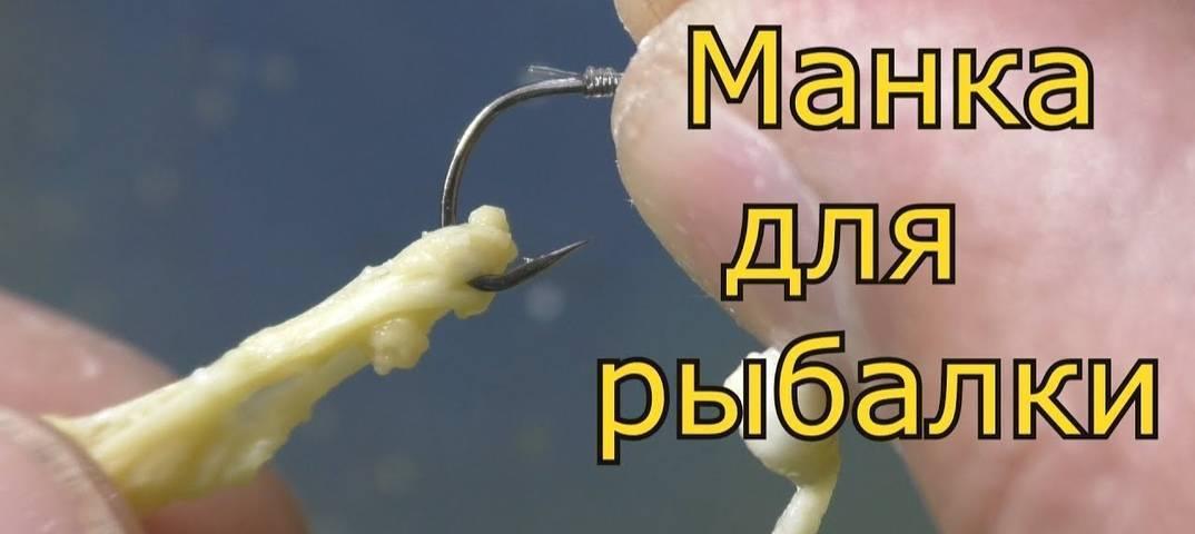 Как приготовить манку для рыбалки на карася