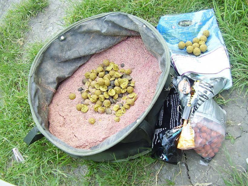 Прикормка для ловли сазана