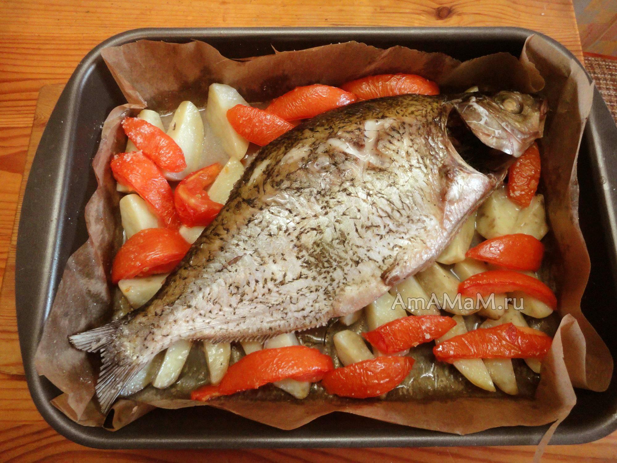 Лещ запечённый в духовке – рецепты приготовления
