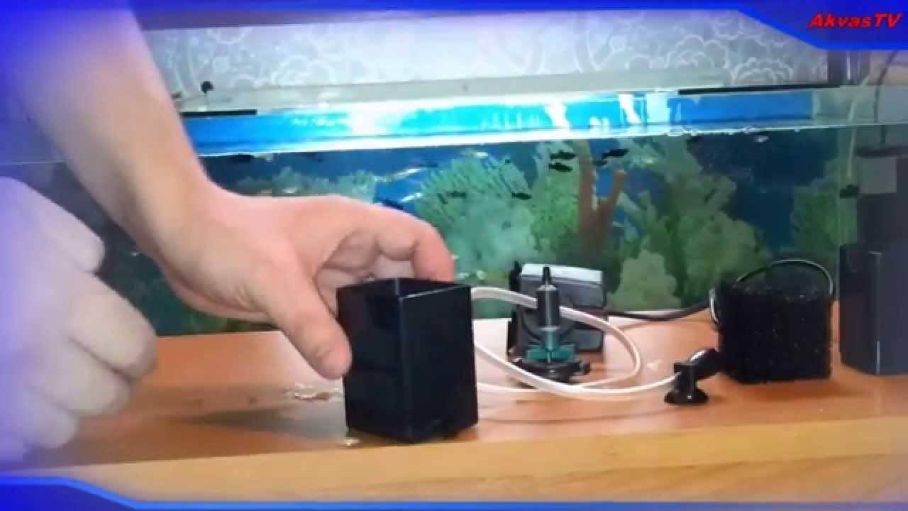 Как правильно мыть фильтр в аквариуме?