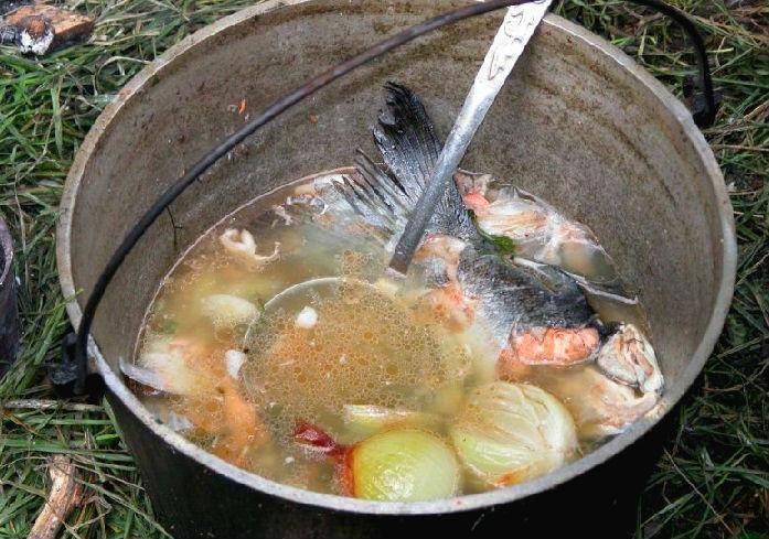 Уха из форели / рыбные супы / tvcook: пошаговые рецепты с фото