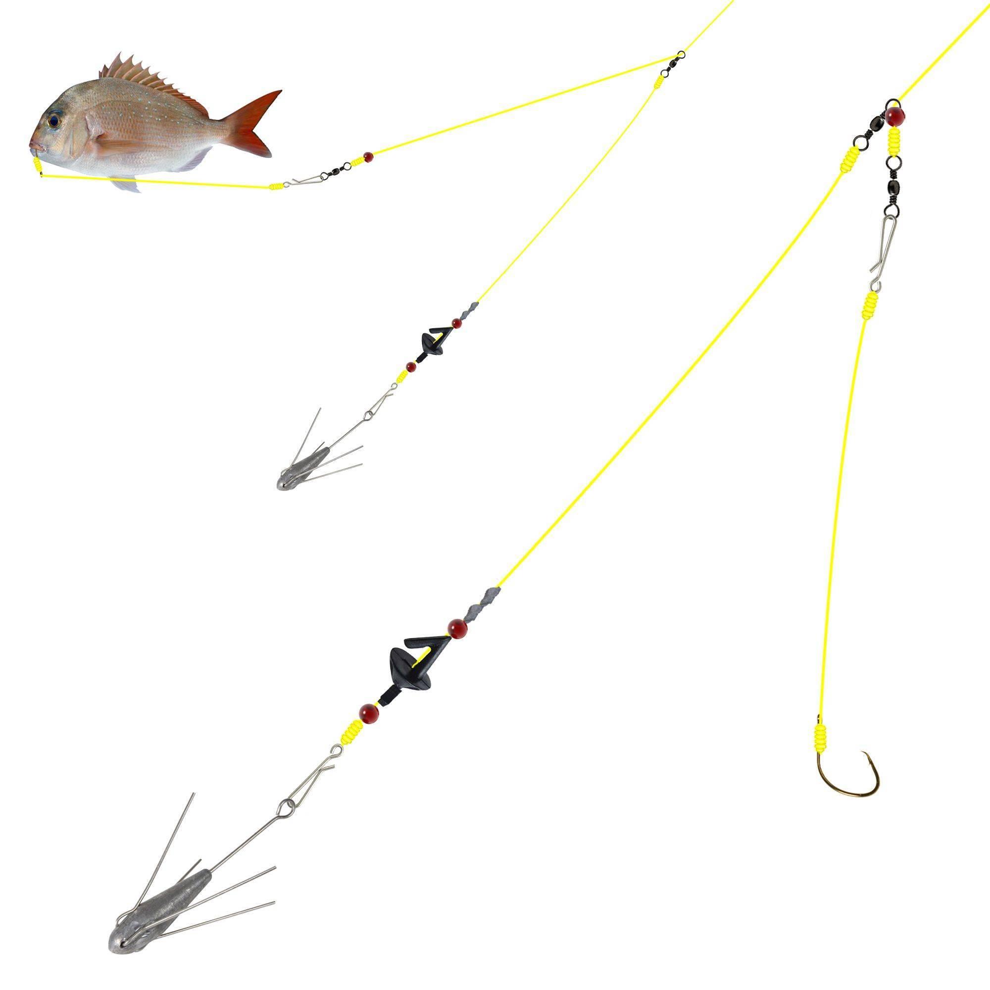 Рыбалка на белом море: какая рыба водится (фото и названия), лучшие рыболовные базы