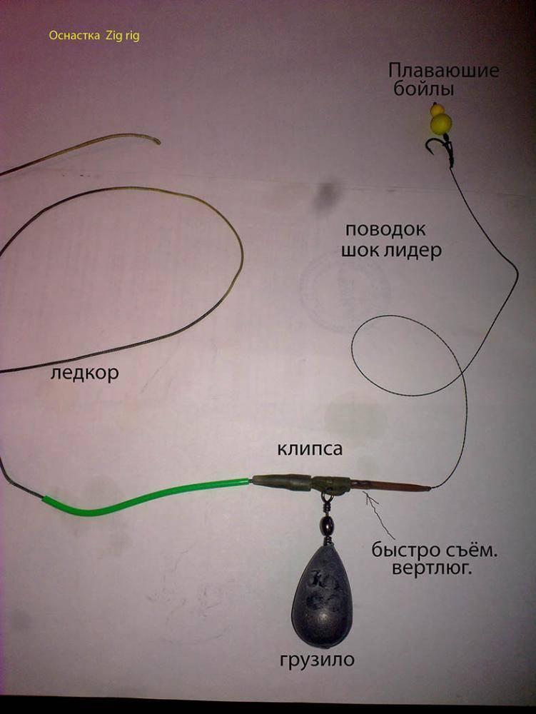 Особенности оснастки джиг риг