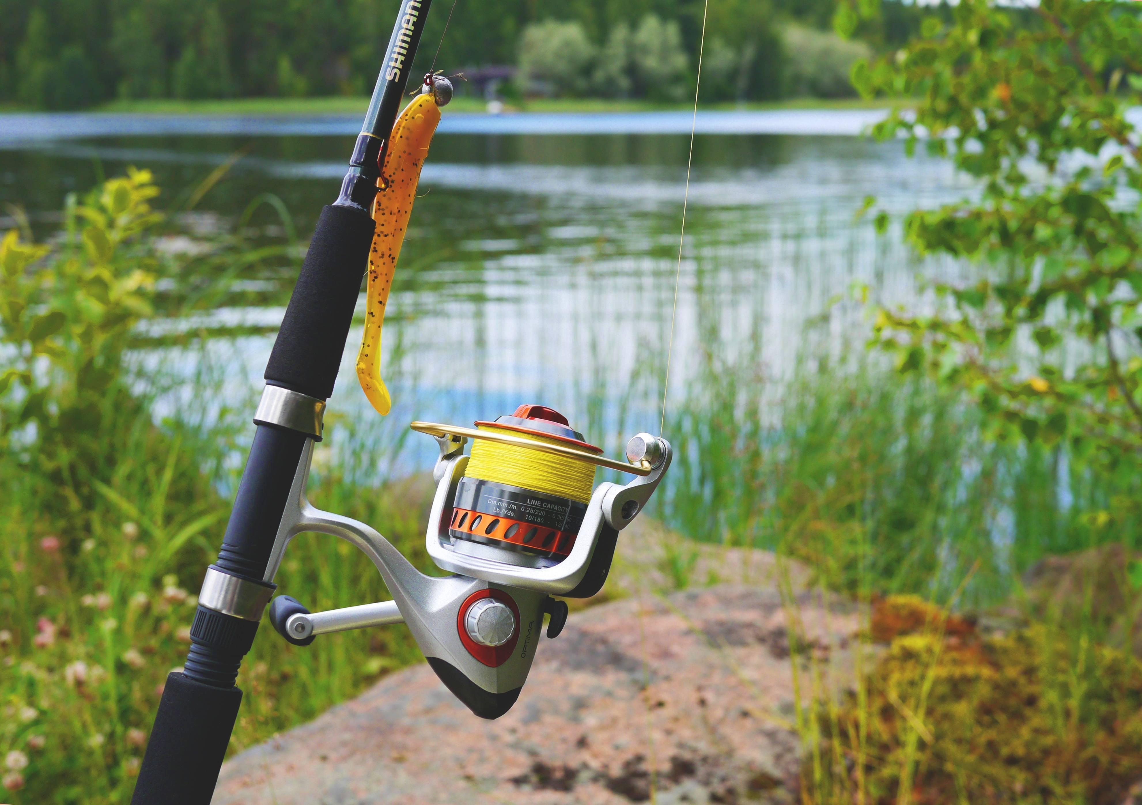 Эхолот для рыбалки с берега, его функции, приемы пользования, лучшие модели