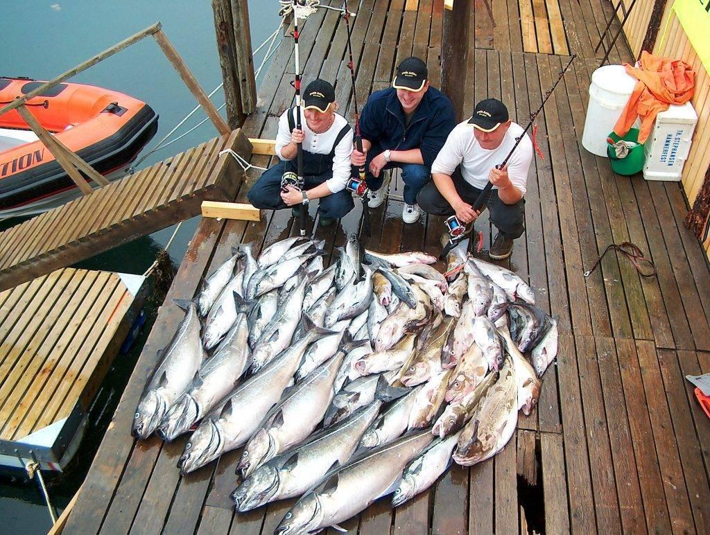 Ловля трески: пилькер и снасти, блесны и другая оснастка, рыбалка на баренцевом море в россии и в балтике, в норвегии и в других местах, выбор катушки