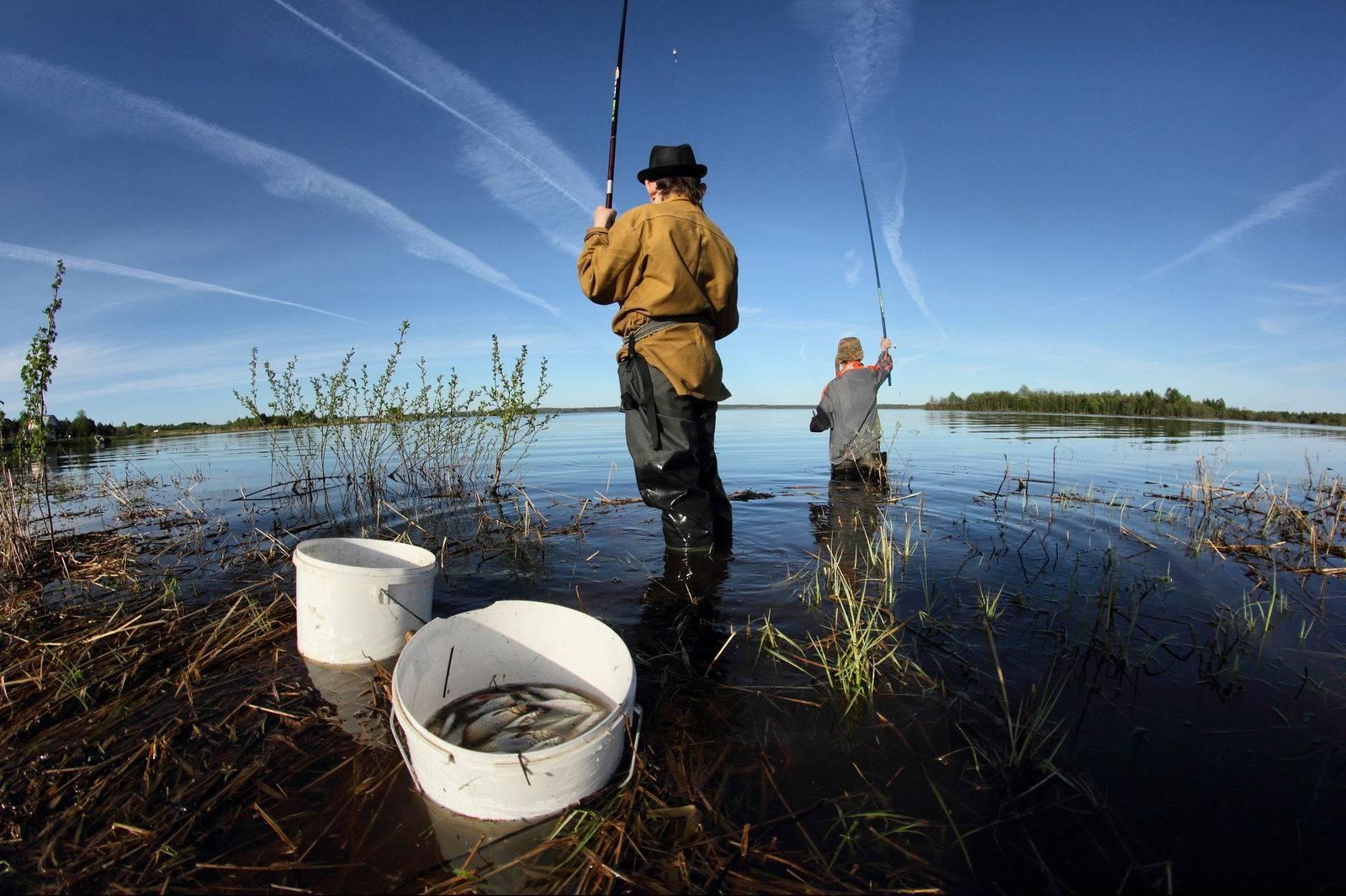 Рыбалка в мае ⏰ особенности и тенденции