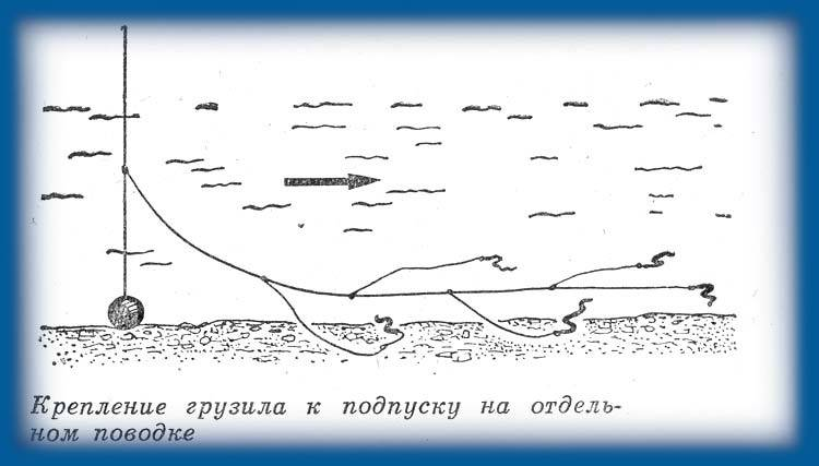 Снасть макушатник: виды и принцип работы, самостоятельный монтаж, ловля сазанов и карпов   berlogakarelia.ru
