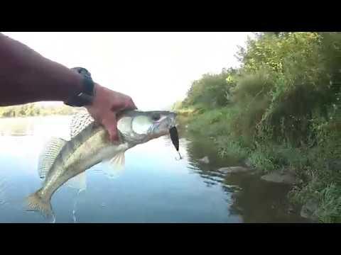 Рыбалка в коломне: платные и бесплатные места