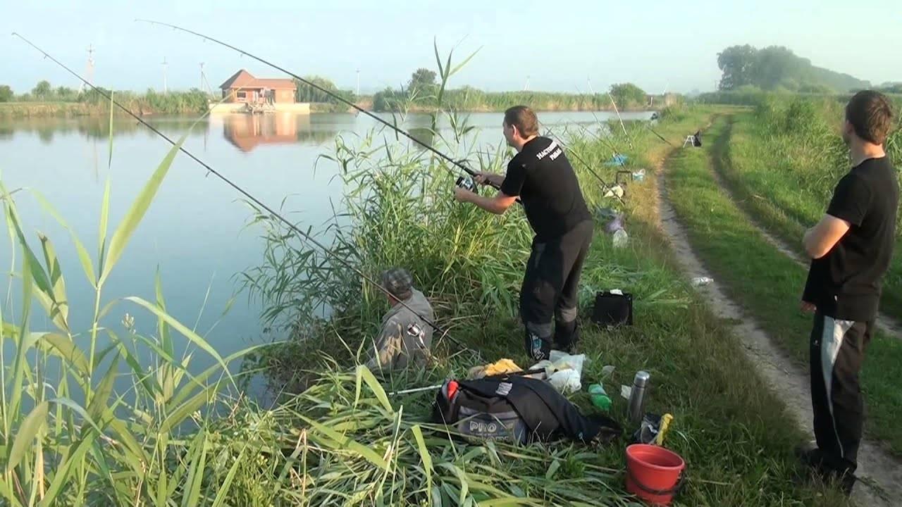 Исследователь рго изучит затопленные аулы на дне краснодарского водохранилища -  общество - тасс