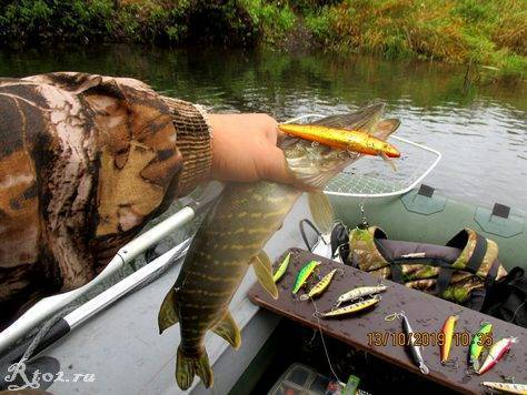 Рыбалка в октябре: какую рыбу ловят и какими снастями