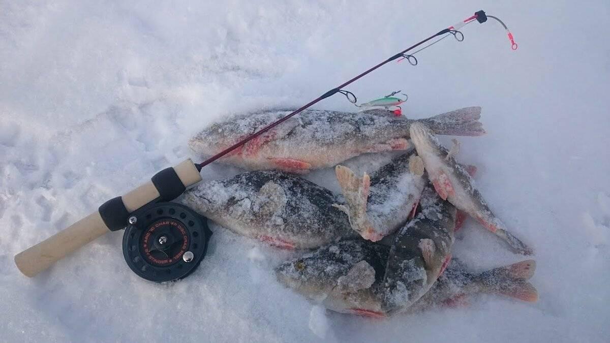 Ловля судака на балансир зимой - рыбачок!сайт рыбачок