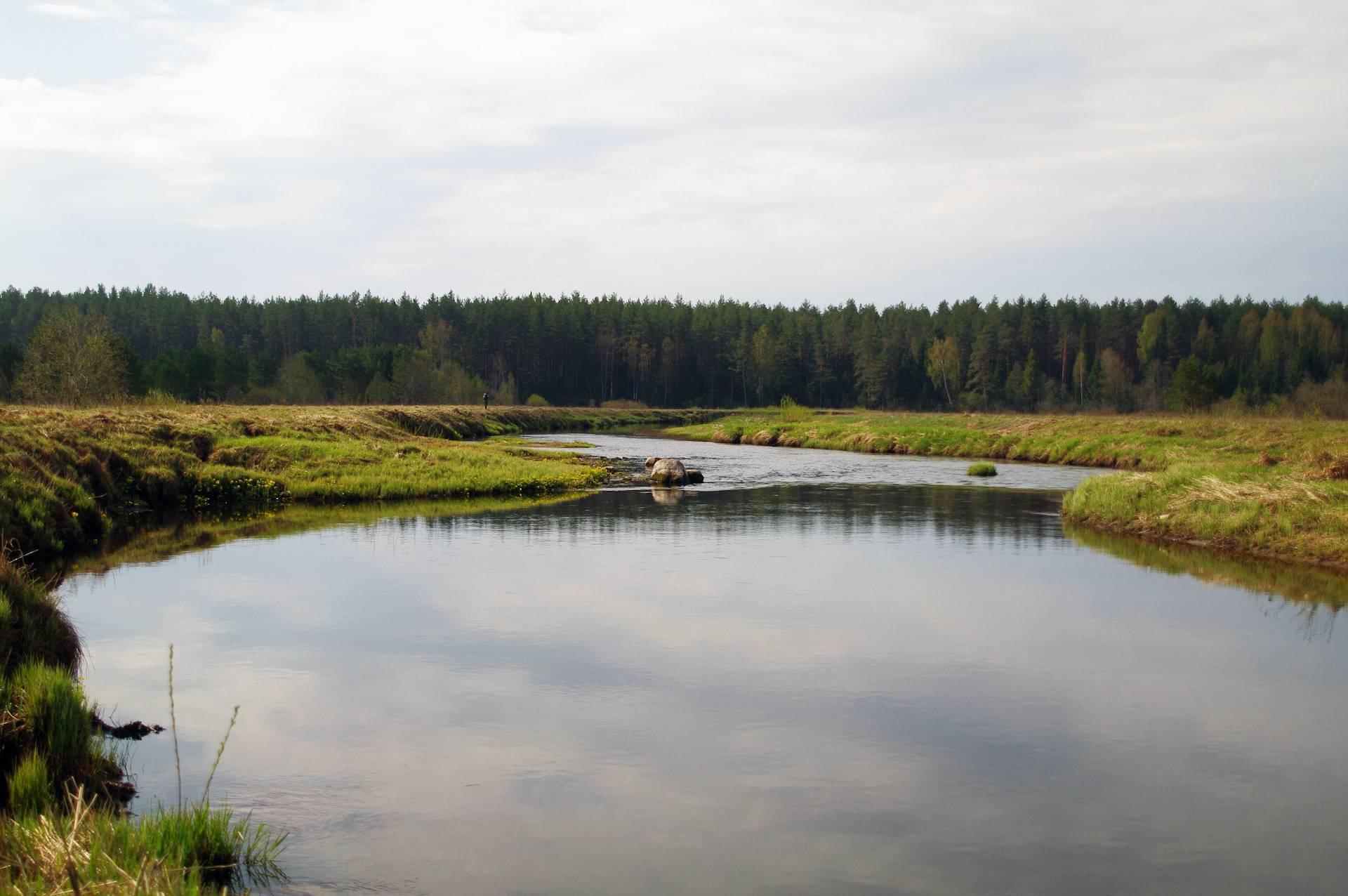 Тверская область, 2020 год и нерестовый запрет на рыбалку