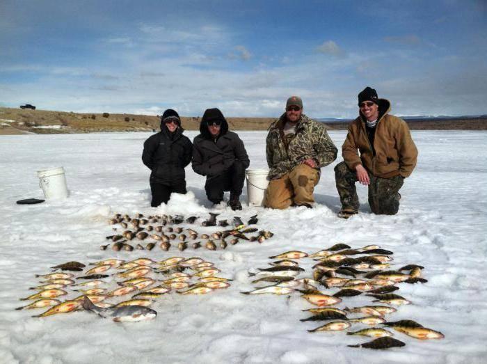 Рыбалка в подмосковье - север области