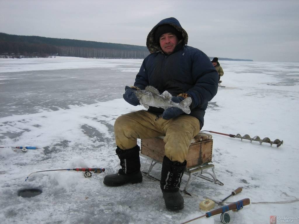 Рыбалка по первому льду: выбор снастей и места ловли