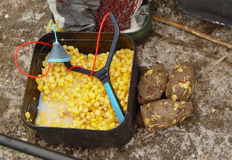 Прикормка для карпа своими руками - рецепты в домашних условиях на фидер