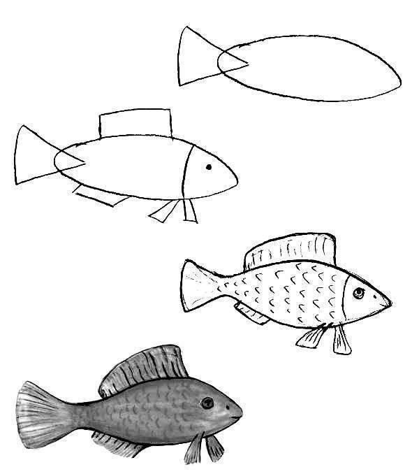 Как нарисовать рыбку карандашом и фломастером - поэтапные мастер-классы для начинающих