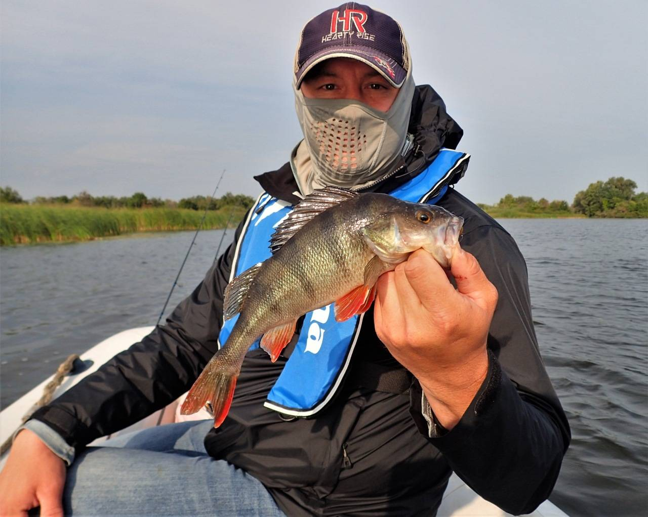 Платная рыбалка в самарской области: рыболовные туры, охотничьи базы и водоемы самары