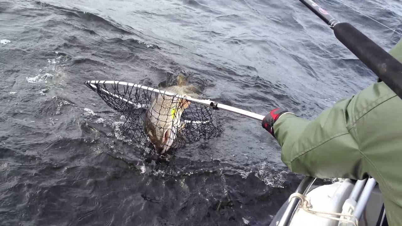 Рыбалка в ладожских шхерах