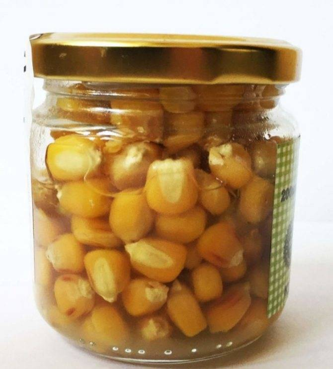 Правила насаживания кукурузы для удачной ловли карпов