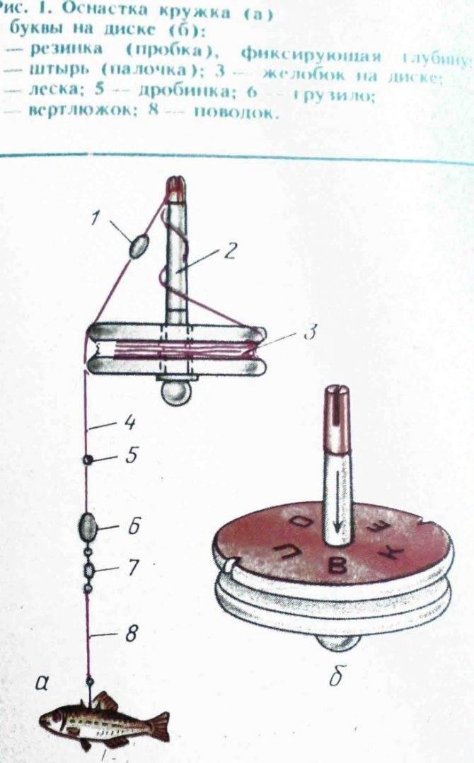 Ловля щуки на кружки: конструкция, выбор и монтаж оснастки, видео изготовления снастей своими руками