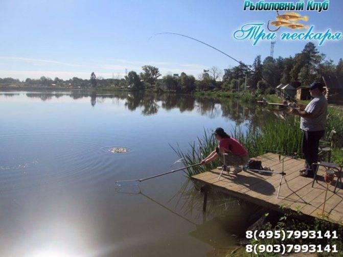 Пруд Поли: Охотничье-рыболовные базы и хозяйства России, Три пескаря курганинск рыбалка.