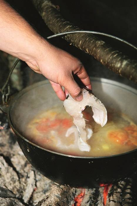 Рыбацкая уха из щуки и классический рецепт простого блюда | cherpachok.com
