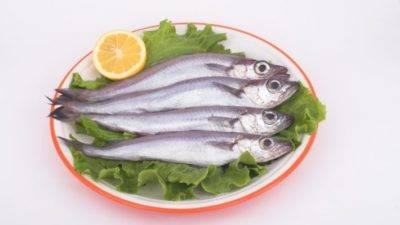 Рыба путассу: польза и вред океанской рыбки. какими полезными свойствами обладает и может ли быть вред от путассу