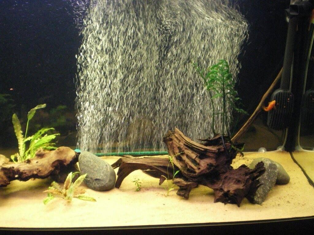 Вода для аквариума: кислотность (ph), жесткость (dh) и др показатели