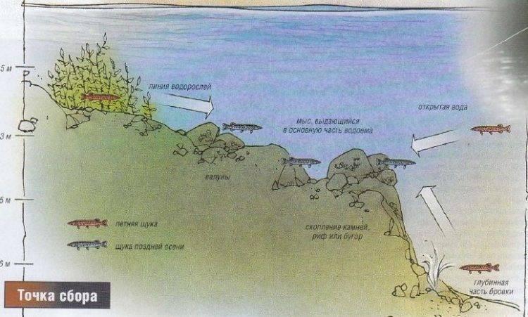 Техника ловли маховой удочкой на озерах и водохранилищах – рыбалке.нет