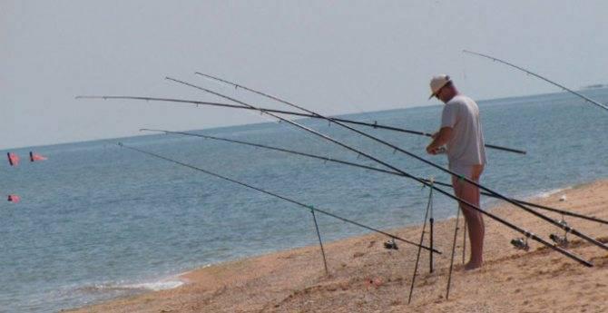 Снасть для ловли пеленгаса на азовском море
